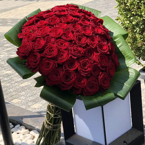 51 Red Roses Send Turkey